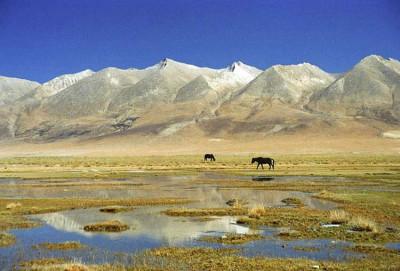 Tibetan-plateau