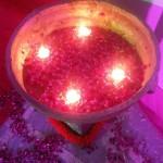 ゆうかのインド奮闘記⑤ インドのド派手な結婚式