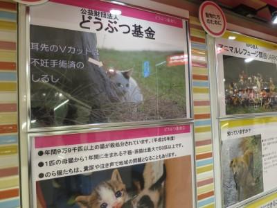 阪急サンタ 096 (960x720)