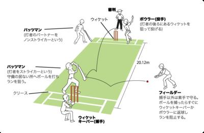 クリケット説明画像